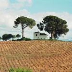 kurz vor Villafranca del Bierzo