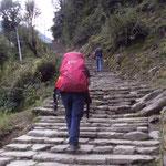 Treppen, den ganzen Tag lang