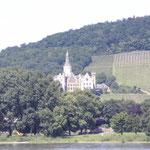 Aussicht am Rhein