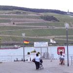 Ausblick am Rhein