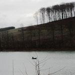ein einsamer Angler