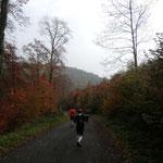 durch tolle Herbstlandschaft