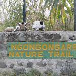 Begrüssung im Nationalpark