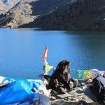 der Sardu am heiigen See