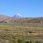 an den Zelten - im Hintergrund Volcano Licancabur (5915m)