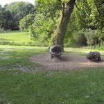 Gäste im Westfalenpark