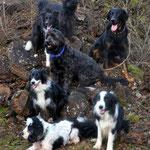 Von oben nach unten...Newt, Bo ,Eyco, Leelo, Peggy , Wee-Bee & Bill