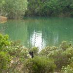 Lac de St Cassien.....