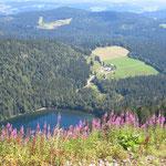 Feldberg im Schwarlzwald im Sommer