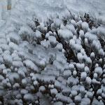 5.035 Wasserfall Unterdrackenstein
