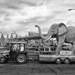 Fotografia di Gianni Maffi - Circo Orfei 3, Assago (MI) - 2015