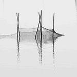 Fotografia di Luca Cortese - Decayed Fishnet, 2012