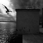 Fotografia di Francesco Cito - Divers in Corigliano Calabro (2), 2008