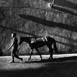 Fotografia di Francesco Cito - Palio, Sgambatura – Siena 2003