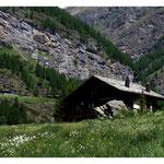 Alphütte Art.-Nr. 9507