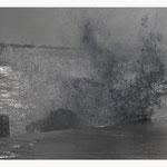 Wildes Wasser (Art.-Nr. 9583)