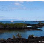 Galapagos (7001)