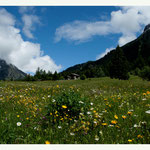 Frühling in Graubünden (8268)