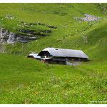 Leben auf der Alp (1393)