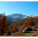 Herbst (Art-Nr. 6789)
