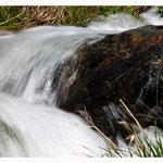 Wildwasser (Art.-Nr. 9290)
