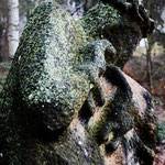 flurzeichen|dudenhofen | kestutis balciunas|litauen