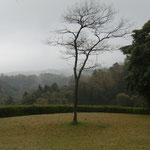 江津市 中央公園