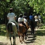 sur les chemins du Lot à cheval