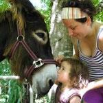 Location d'âne de bât pendant vos vacances