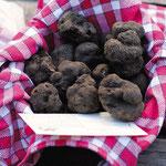 Panier de truffes sur le marché de Lalbenque