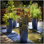 Les jardins secrets de Cahors