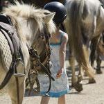 Randonnée à cheval dans le Lot