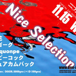 「nice selection」2017年11月15日