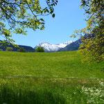 Naturlehrpfad Achera Biela (Ried-Brig)