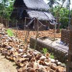 Handicraft-tour: brickyard