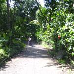 kleine Straße - small backroad