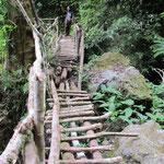 homemade bridge