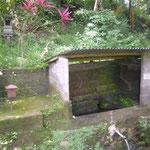 Brunnen - spring