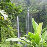 Der Wasserfall von Sekumpul
