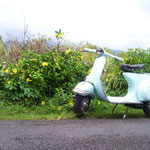 Vespa with flowers