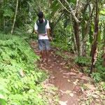 Erdweg - rulal path