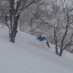 時々堅くなり新雪とまだらだが、がんがん滑る。