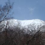今日登るペケレベツ岳が見えてきた。