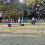 Iva beim Ringtraining in Celle