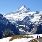 Grindelwald 2010