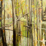 SUMPFLANDSCHAFT BEI ORILLIA Ontario Kanada (2015), 100 cm x 70 cm, Oel auf Leinwand / oil on canvas. Amazing swamp area east of Orillia, Canada *VERKAUFT/SOLD*