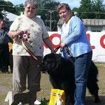 1 августа 2009, Монопородная КЧК выставка «Ньюфаундленд - 2009», г. Санкт-Петербург
