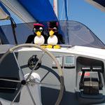 das gemütliche Cockpit