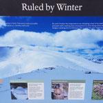 Jahreszeiten im Wandel