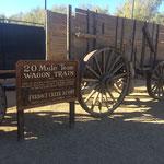 20 Mule Track